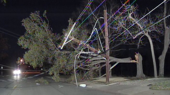 High Winds Down Trees, Power Lines