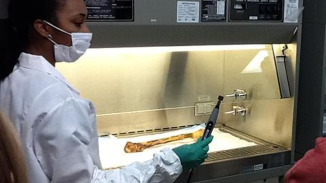 Fort Worth Crime Lab to Resume DNA Testing