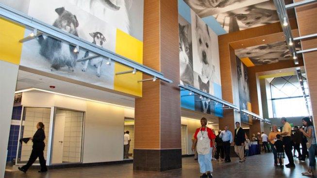 SPCA Opens New Dallas Facility Monday