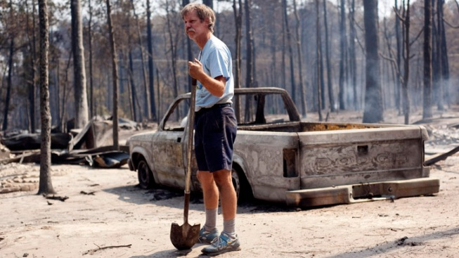 Free Trees in Wildfire-Devastated Bastrop