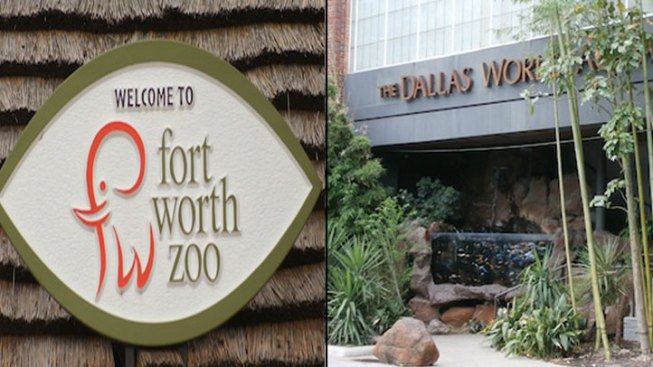 Country's Top Zoos, Aquariums Are in DFW