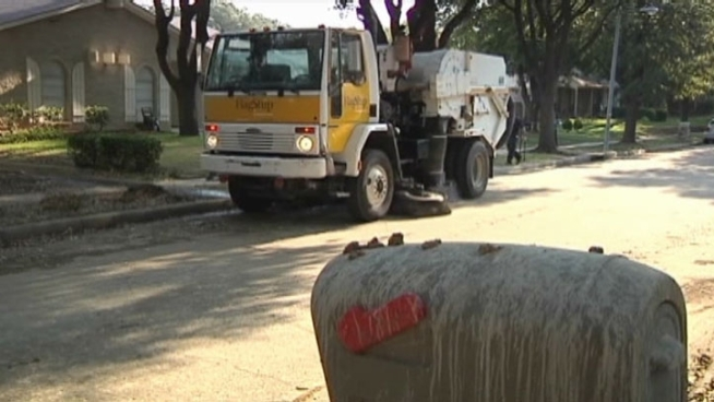 The neighborhood along Chamberlain Drive in Carrollton is getting help cleaning up after hundreds of egrets that call the street home and make a huge mess.