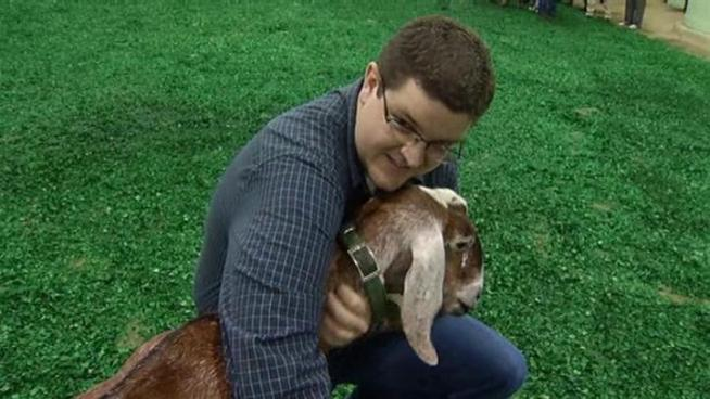 NBC 5 Team uses warm hands and quick feet to compete at the Fort Worth Stock Show.