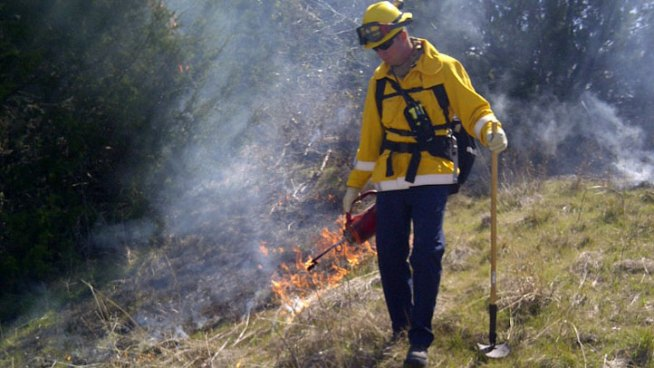 Cedar Hill State Park is conducting a prescribed burn with firefighters from Cedar HIll, Plano and Lewisville setting fires in the nearly 2,000 acre park.