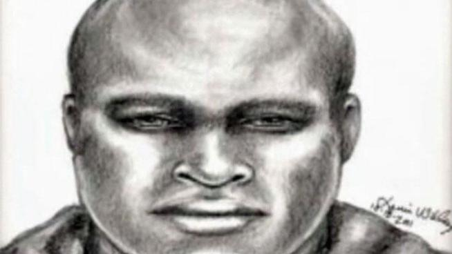 Plano Police released a sketch of a serial rapist, but police warn his attacks may not be limited to a single sorority.