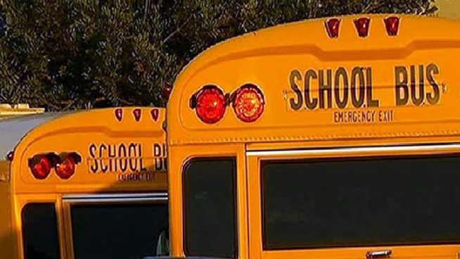School Bus Driver Killed in Bus Crash