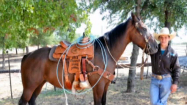 A saddle thief stole a 16-year-old's $2,000 North Texas High School Rookie of the Year trophy saddle right off his horse.