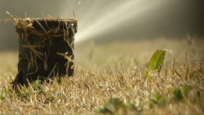 Daylight Savings triggers a change in watering restrictions for Frisco residents.