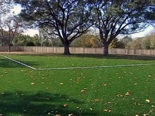 Dallas Halts Work on AstroTurfed Empty Lot