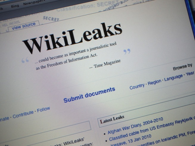 Pentagon Review: WikiLeaks Docs Pose No Danger to Troops