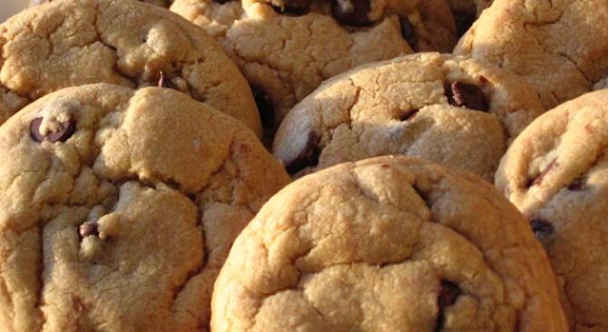Fake-n-Bake: A Sweet Cheat Sheet