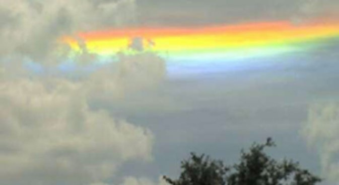 Look In the Sky, It's a Circumhorizon Arc