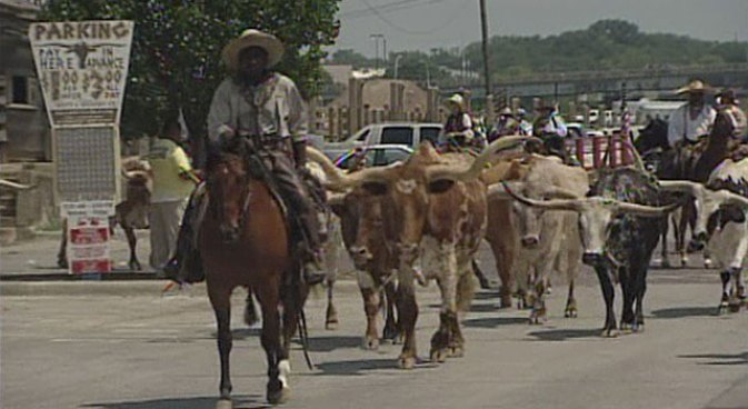 With their twice-daily cattle drives, the Fort Worth Stockyards aims to preserve local cowboy history.